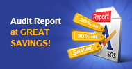 Audit Report at Great Savings, Up to 51% Off